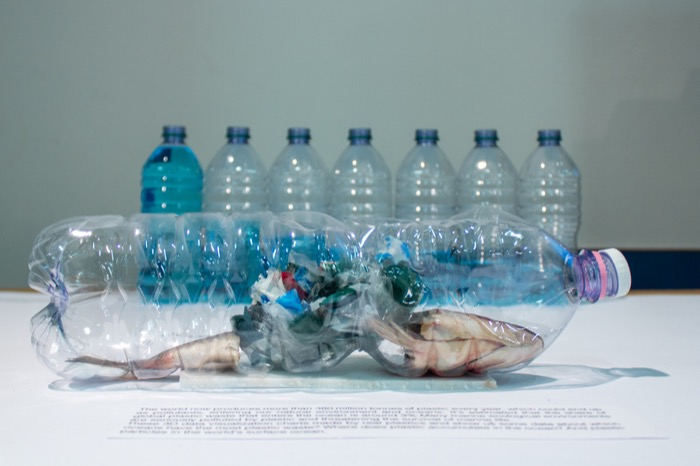 Featured image of the project How waste plastic affect the ocean?